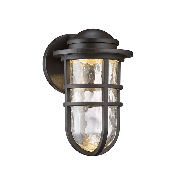Steampunk Collection LED Indoor/Outdoor Wall Sconce